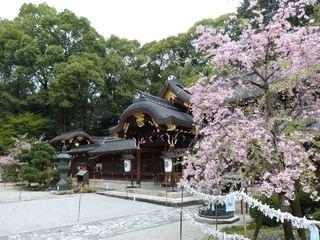 001今宮神社本殿2_R.JPG