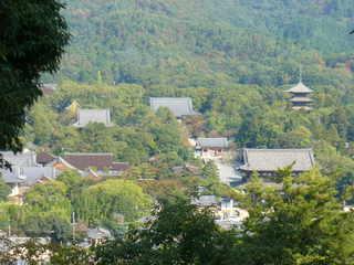 一の丘からの仁和寺全景.JPG
