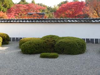 正伝寺七五三.JPG