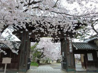 立本寺 (2)_R.JPG