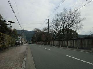 CIMG2446_R.JPG