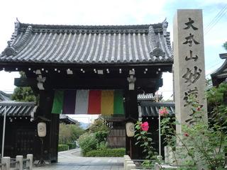 妙蓮寺1.JPG