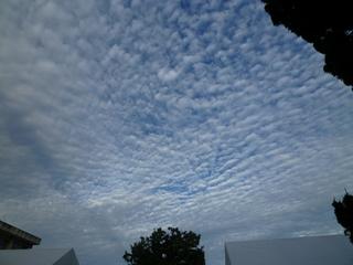 秋の空.JPG